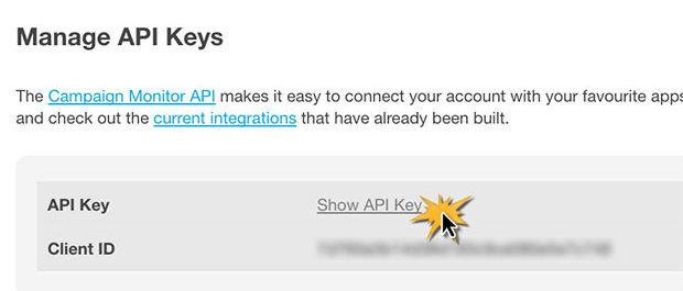 Show Campaign Monitor API Key