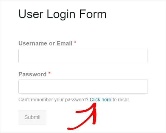 user login form with password reset link example