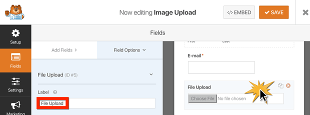 renaming the file upload field