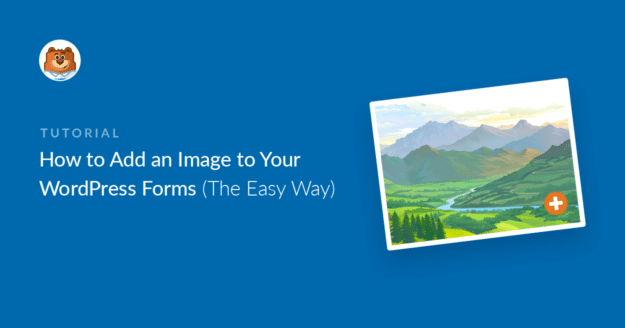 How to add an image to a WordPress form