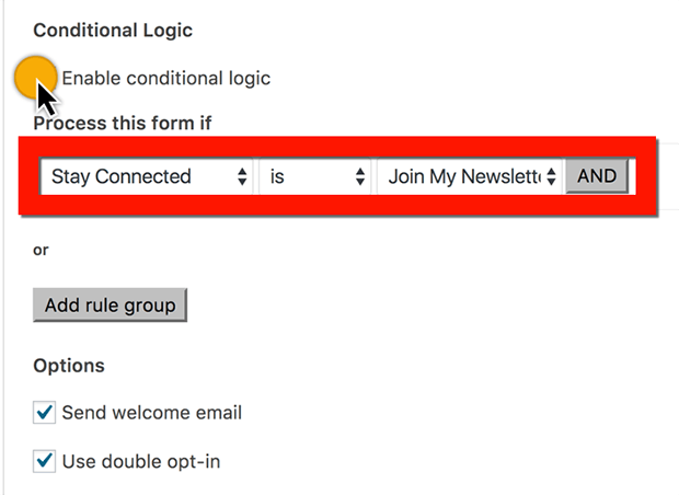 subscribe to MailChimp newsletter checkbox conditional logic