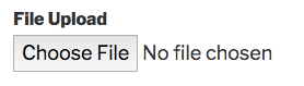 File Upload field