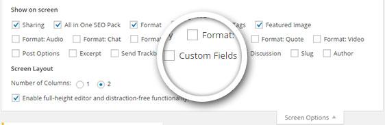 custom-fields-screen-option