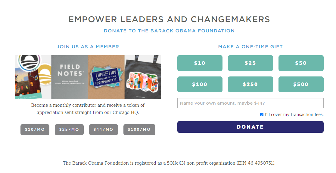 donation page example with monthly options