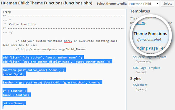 edit theme functions