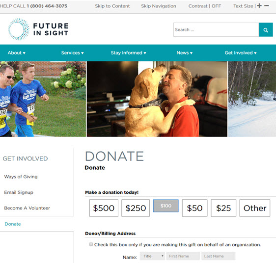 future in sight- donation page