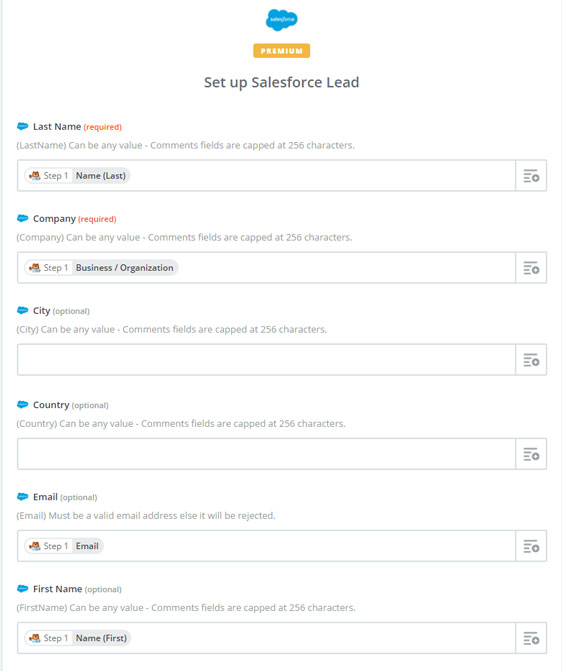 set up salesforce lead