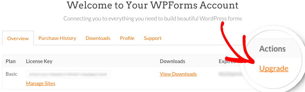WPForms Account upgrade