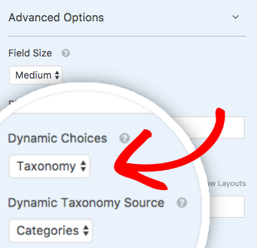 Advanced Options for the Category field