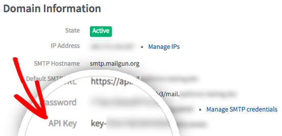 Copy Mailgun API key