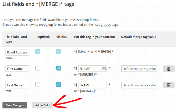 Create MailChimp Custom Fields - MailChimp List Fields and Merge Tags Screen