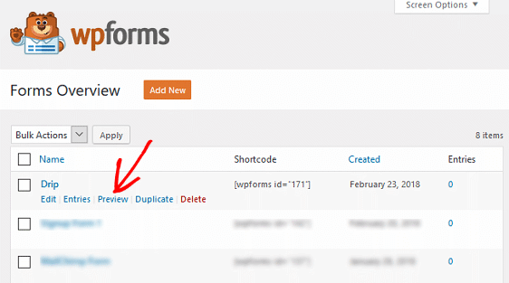 Create a Drip Form in WordPress - Preview Form