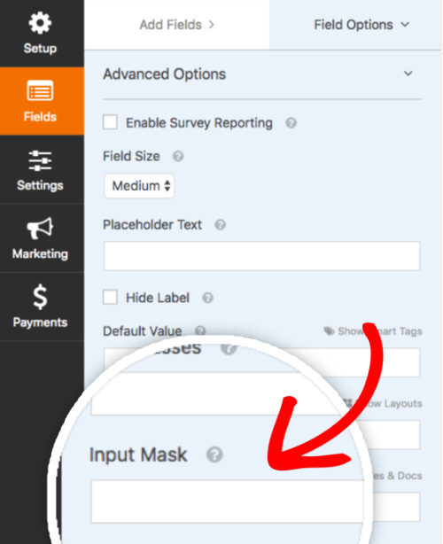 Input mask option in WPForms