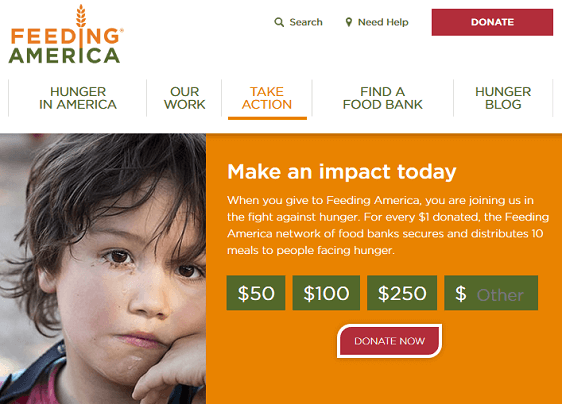 Online Fundraising Ideas for NonProfit Organizations - Email Fundraising Example, Donation Page