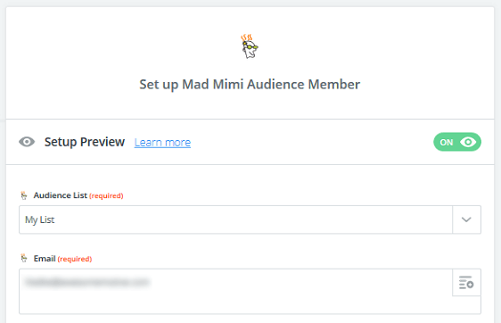 Create a Mad Mimi Subscribe Form - Mad Mimi Form Test
