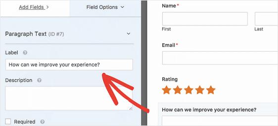Paragraph Text Field Label