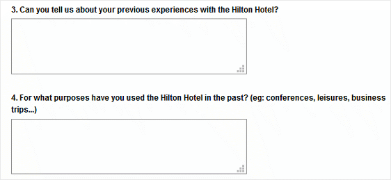 Hilton Hotel Survey Example