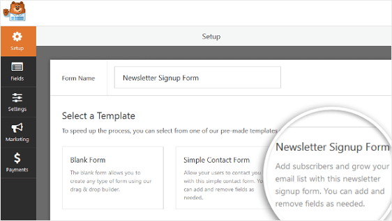 Newsletter Signup Form Template to add terms and conditions to wordpress
