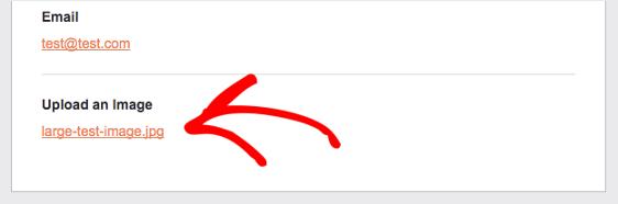WPForms - come vengono inviati gli allegati nelle mail di notifica