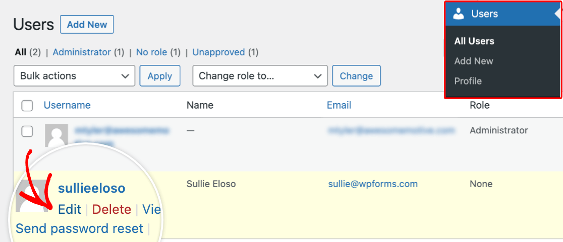 Accessing a user profile in WordPress