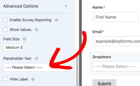 Add placeholder text to Dropdown field