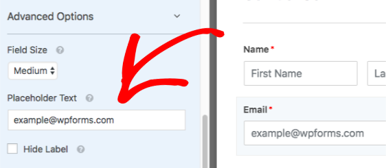 Add placeholder text to Email field