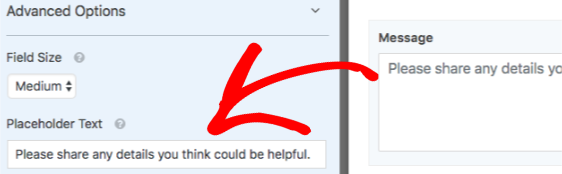 Add Placeholder Text to a form field