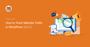 how-to-track-website-traffic-in-wordpress_o