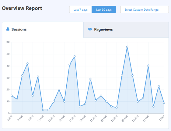 monsterinsights overview report to track website traffic wordpress