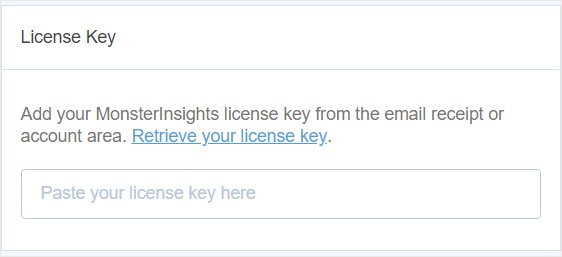 enter license key monster insights