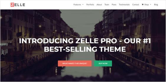Zelle Pro one page WordPress theme