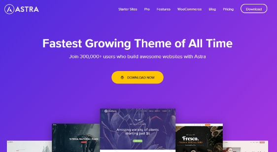 astra business themes featured wordpress business theme