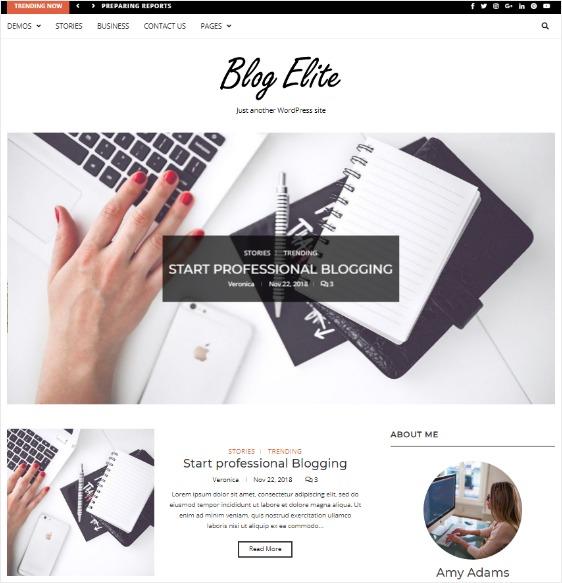 blog elite custom widgets