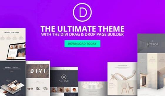color schemes divi builder