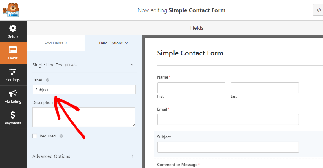 Customizing field of the AMP-friendly contact form