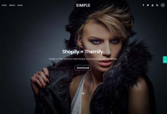 responsive design free theme