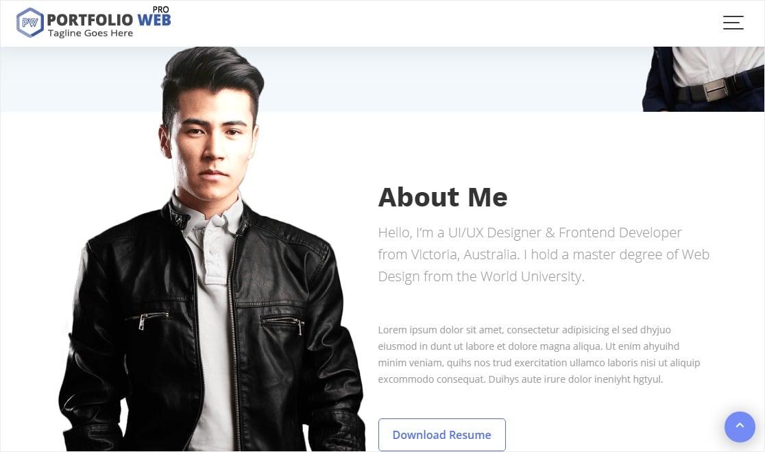 acme themes portfolio web pro