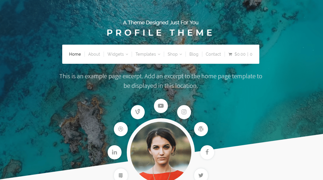 profile resume theme