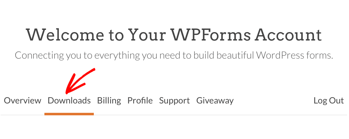 The Downloads tab in the WPForms account area