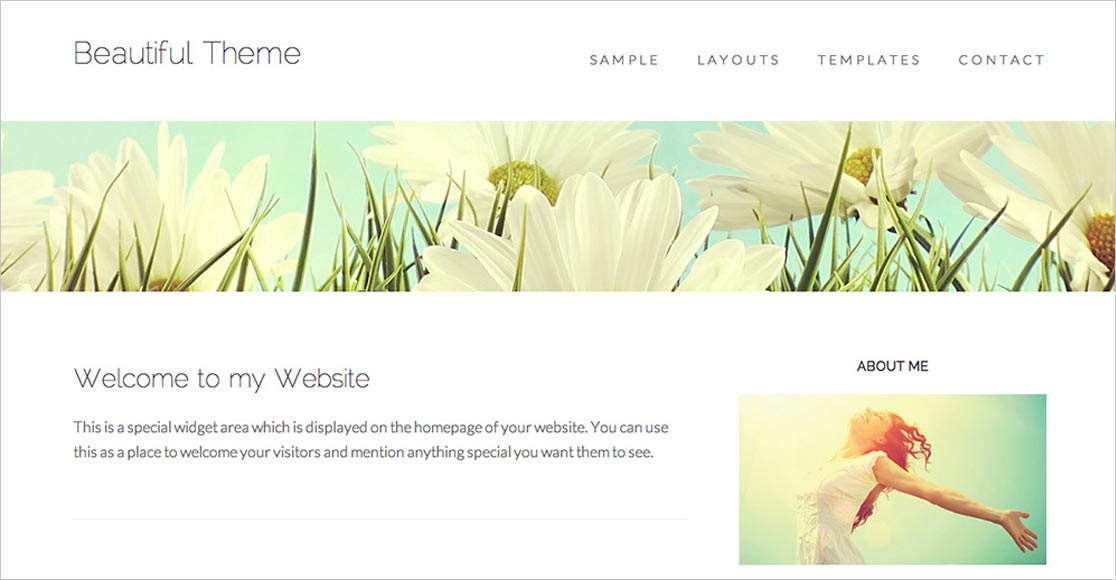 Beautiful Theme best responsive wordpress themes