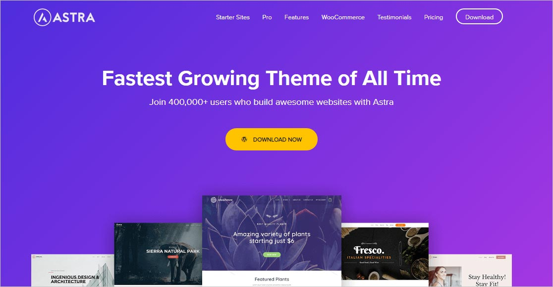 Astra Fastest WordPress Theme