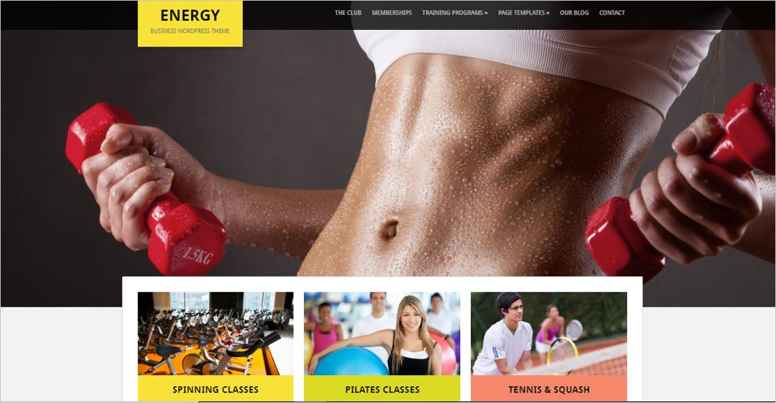 Energy Fastest WordPress Theme