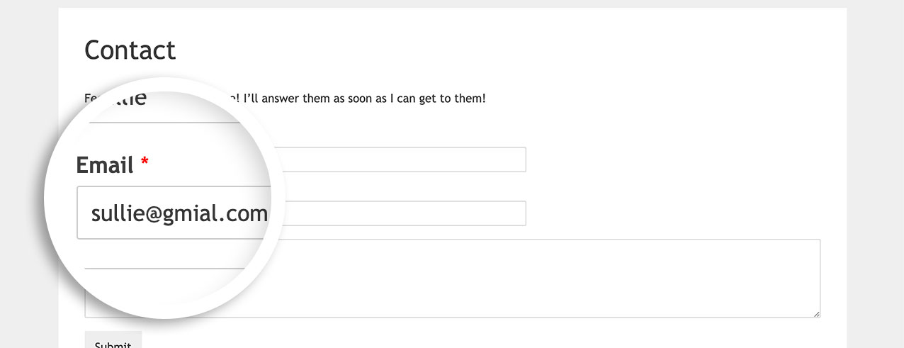 Once the PHP snippet is added, the email suggestion option is now turned off