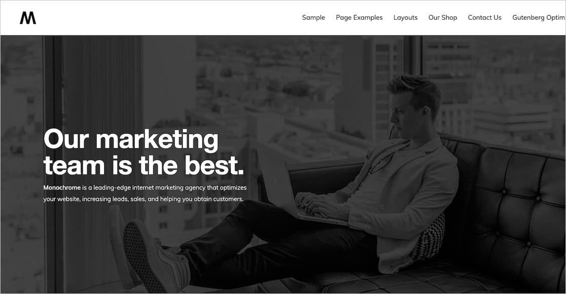 NEW! 17 Best WordPress Themes for Freelance Writers [FREE +
