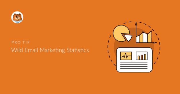 wild-email-marketing-statistics_o