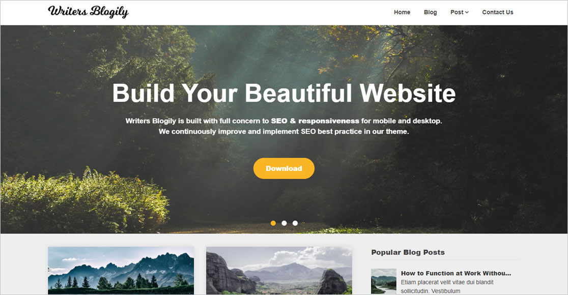 best wordpress themes for authors Writers Blogily