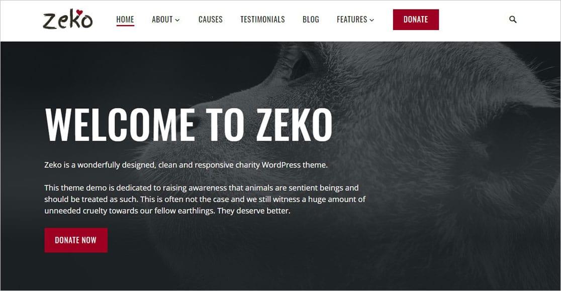 Zeko WordPress Charity Theme