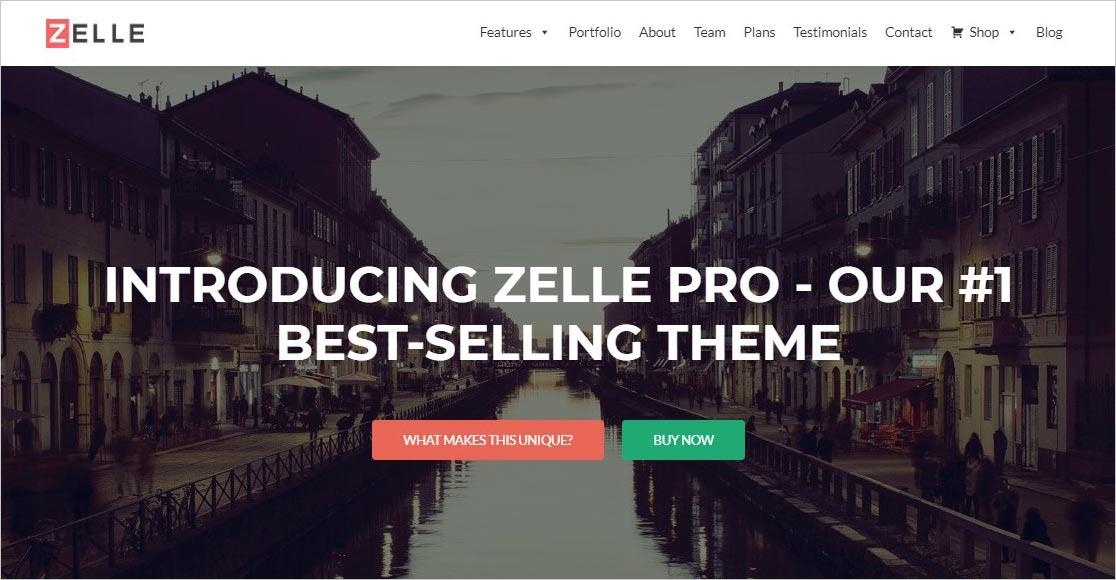 Zelle Pro