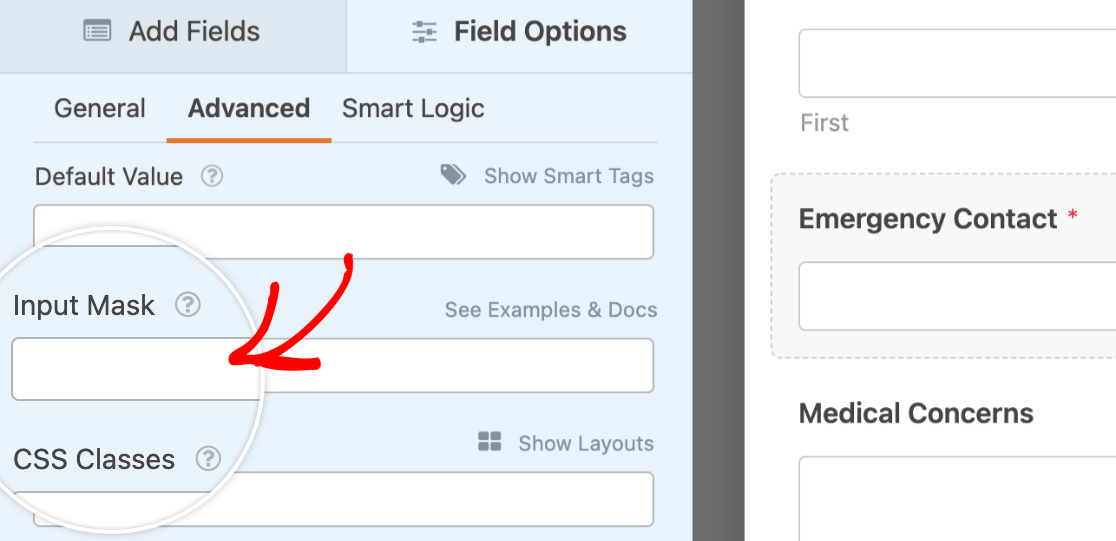Accessing the Input Mask field in a Single Line Text field's advanced field options
