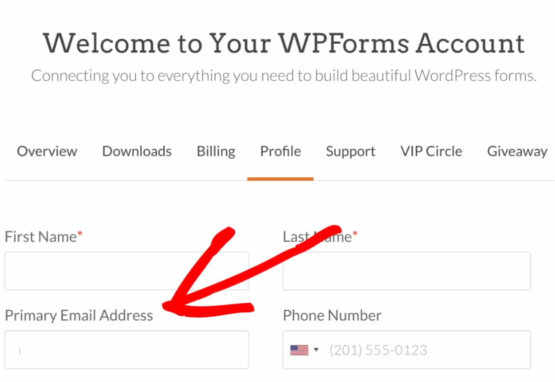 Update Email Address WPForms